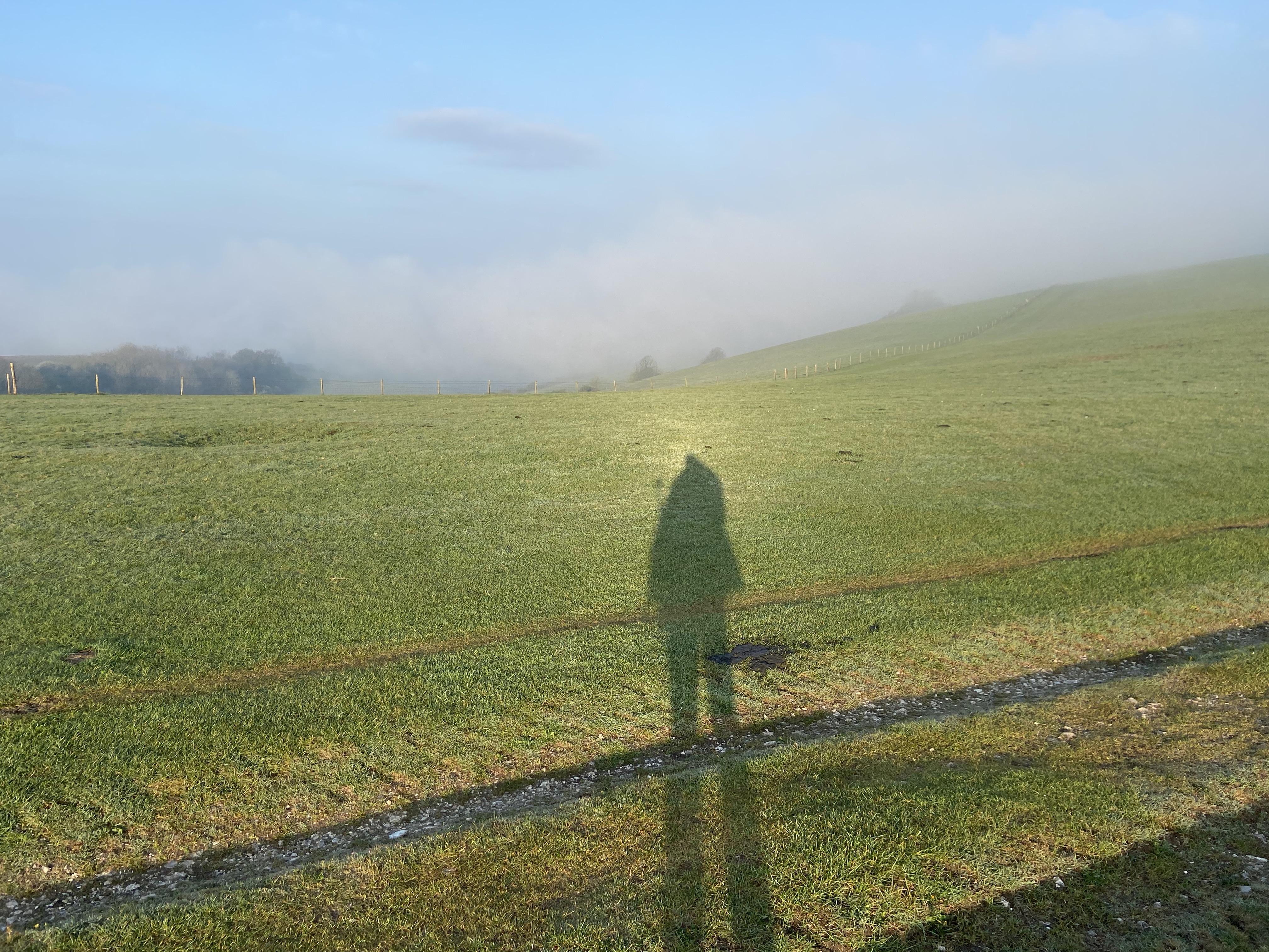 Shadow at Dawn
